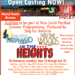 Summer Company Auditions